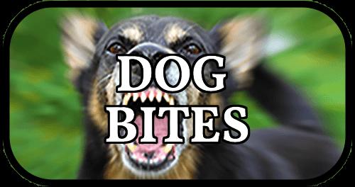 eric blank dog bites